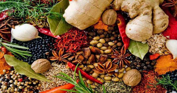 kruiden-en-specerijen-lekker-leven