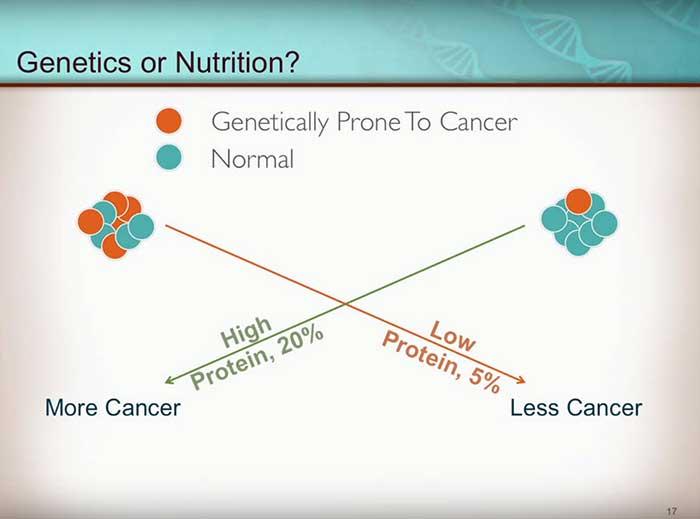 genen-of-voeding